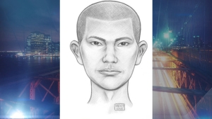 Police released this sketch of a would-be rapist who pushed a 26-year-old woman to the ground in Queens in a Sept. 24, 2014, attack. (Photo: NYPD)
