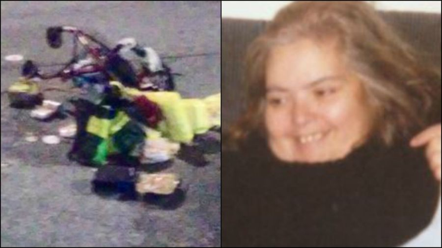 Marlene Zotti died after being hit by a car in Sunset Park early Sunday morning. (Photo provided by the family)