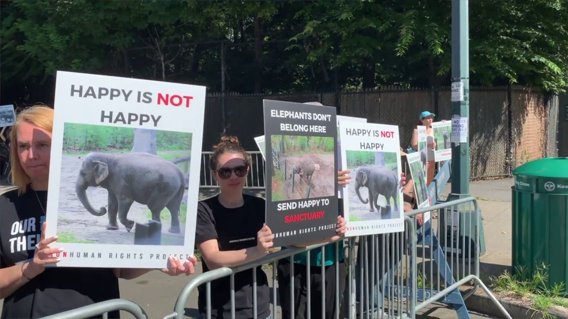 Bronx zoo's Happy the Elephant gets day in court in fight over 'personhood'