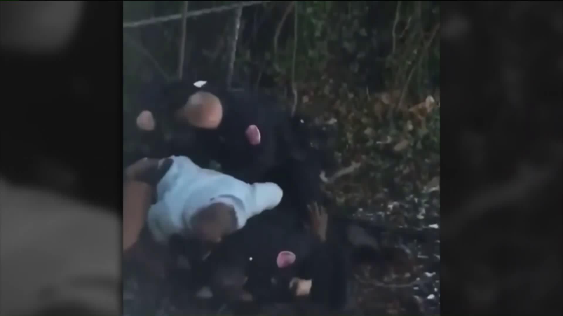 Aggressive arrest in Freeport, Long Island sparks outrage