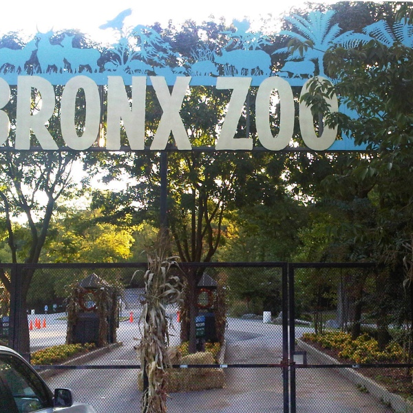 Bronx Zoo in New York City
