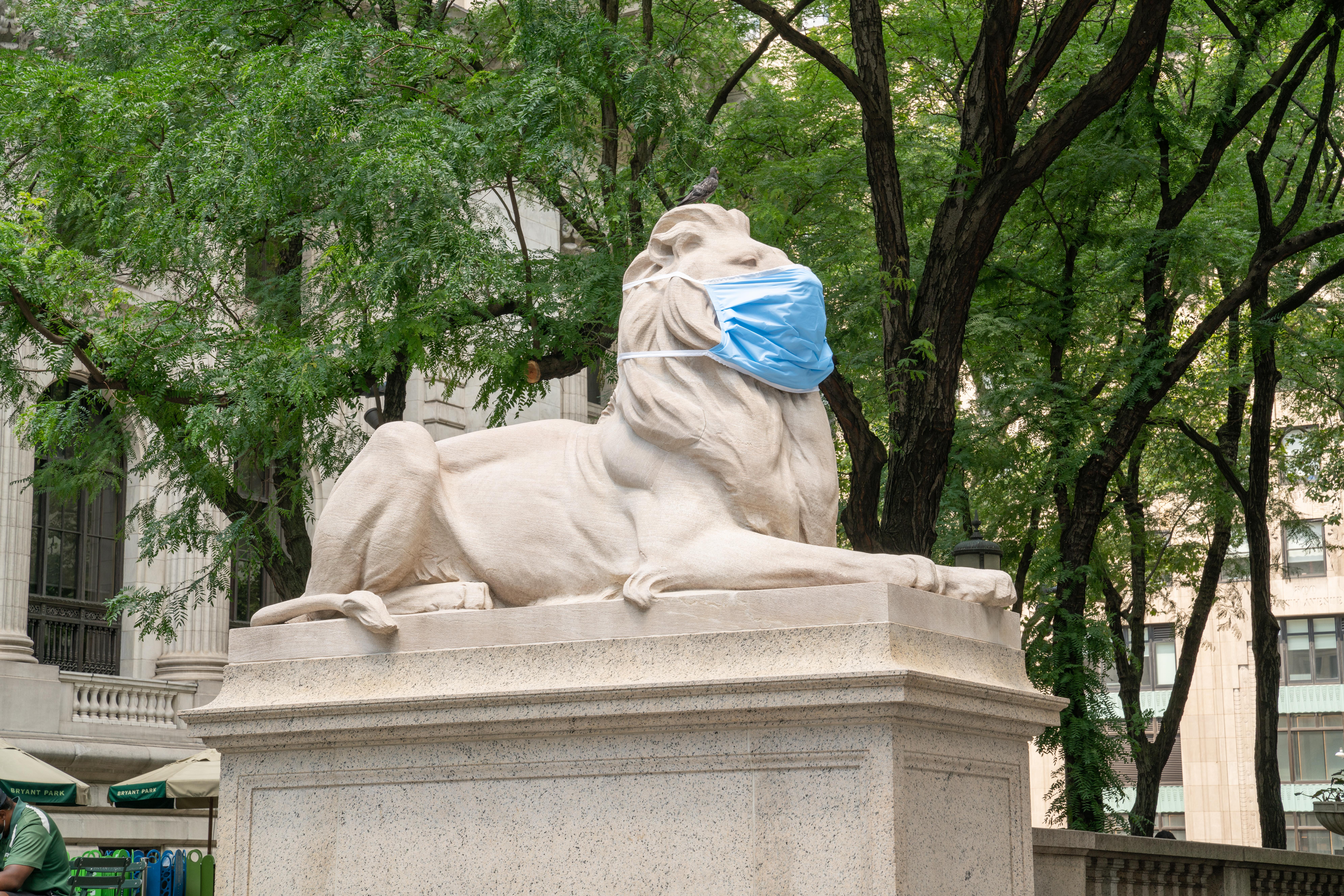 SASB_06_29_2020_Lions_mask-00194.jpg