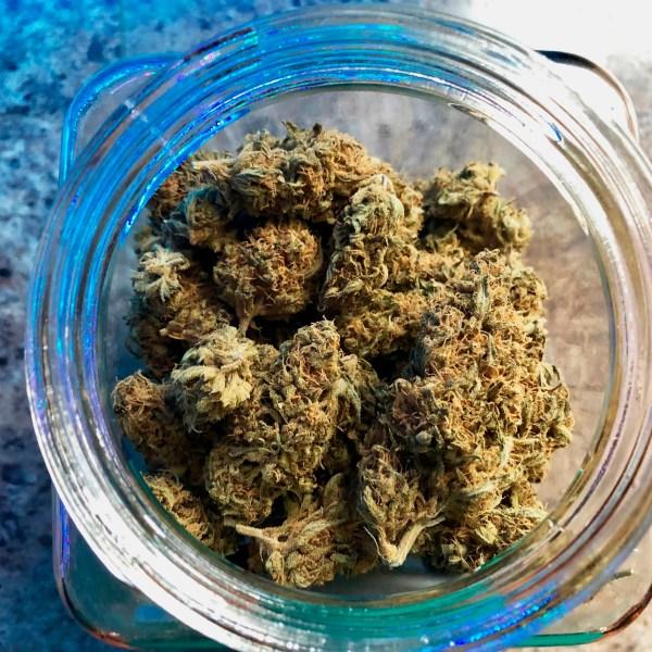 A jar of medical marijuana sits on a counter