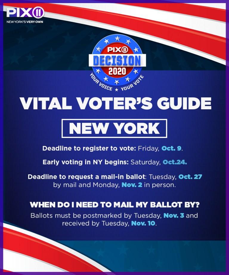 voting guide_ny.jpg