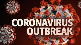 Coronavirus Timeline How novel coronavirus spread