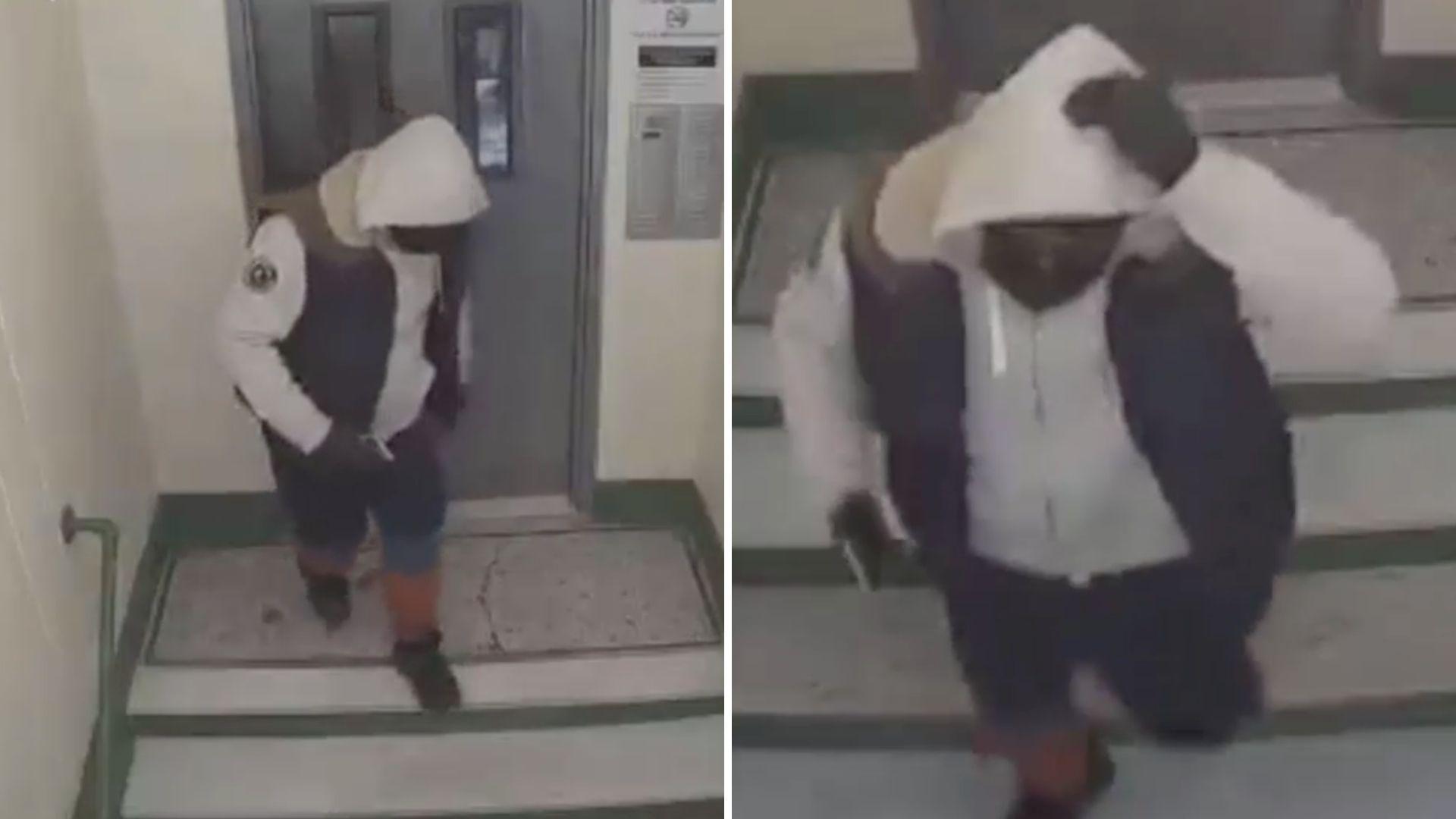 Bronx home invasion suspect