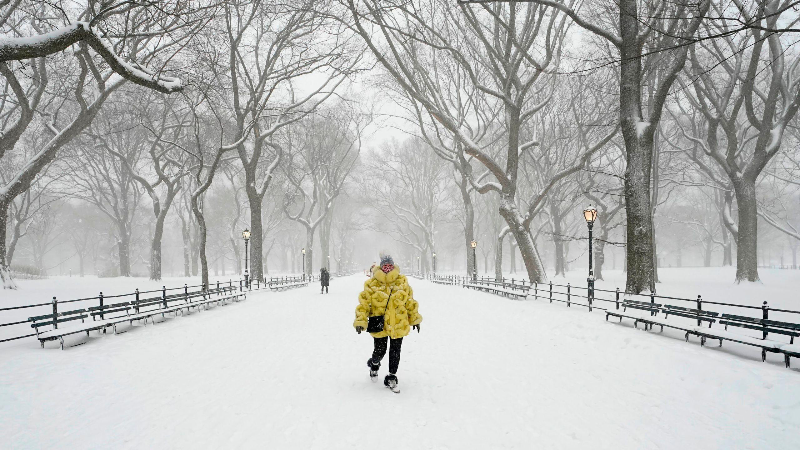 snow new york city