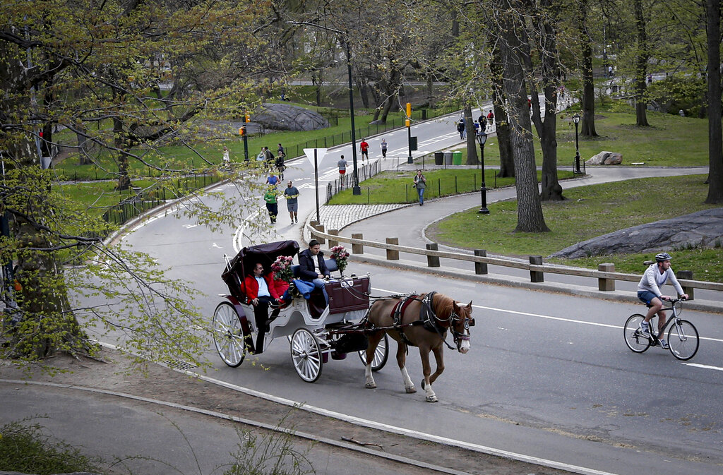 horse-drawn carriage moves through Central Park on spring day