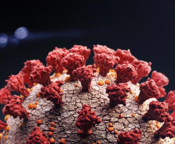 close up of coronavirus