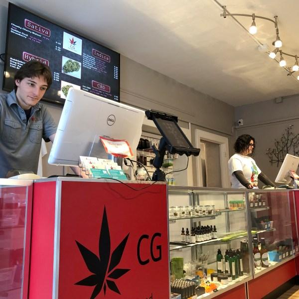 Cannabis adviser at a medical marijuana dispensary