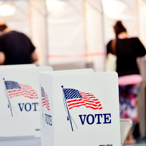 People cast votes in election