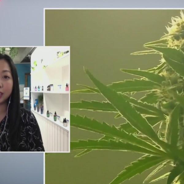 Legal marijuana in NY: Hemp dispensary owner talks benefits, concerns of new law