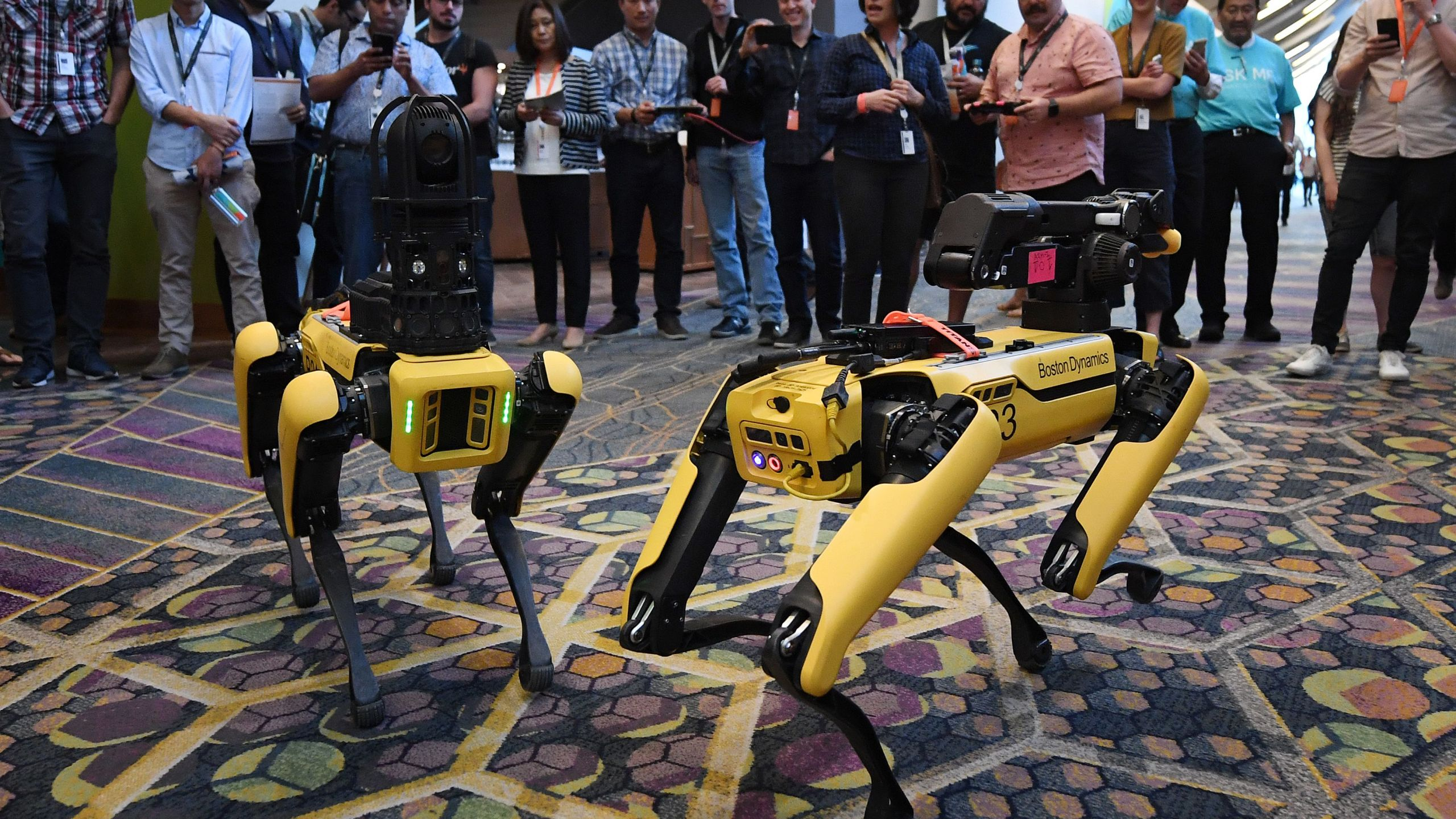 boston dynamics robot dog spot