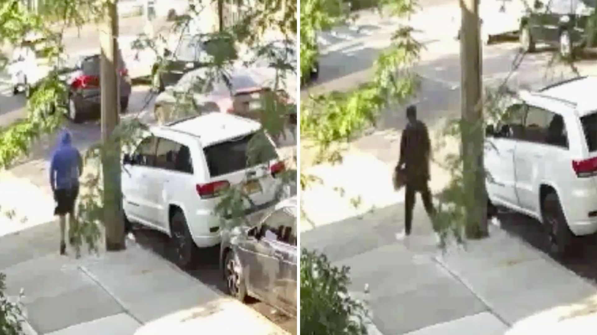 Bronx home invasion robbery suspects