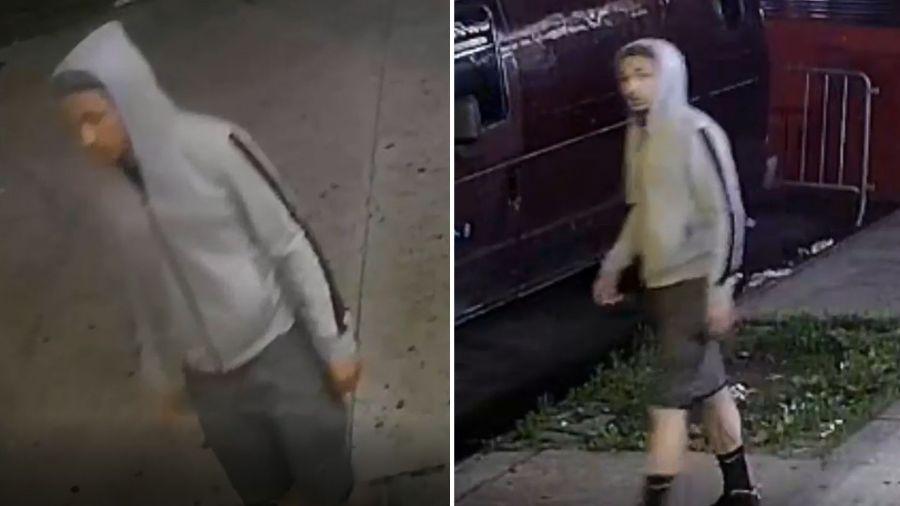 Brutal Bronx attack suspect