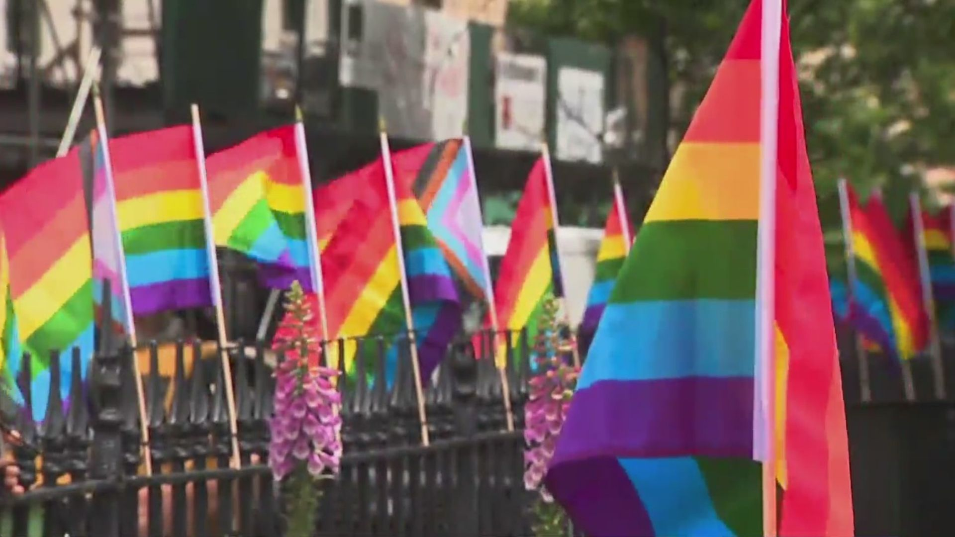 LGBTQ flags outside Stonewall during NYC Pride weekend