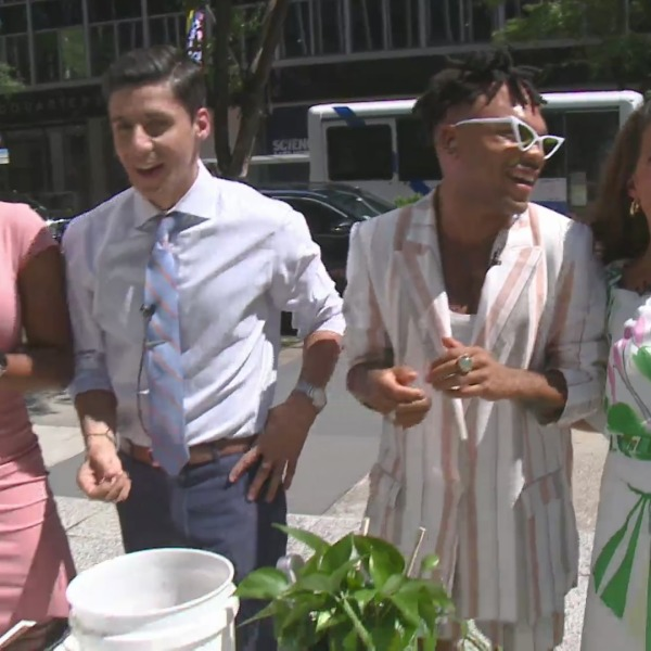 The Plant Kween on the PIX11 Morning News