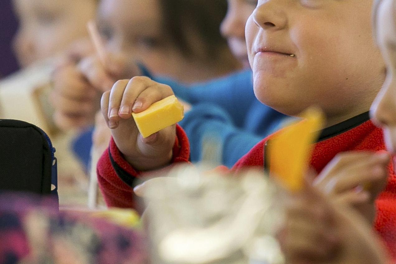 Kids eat school lunch