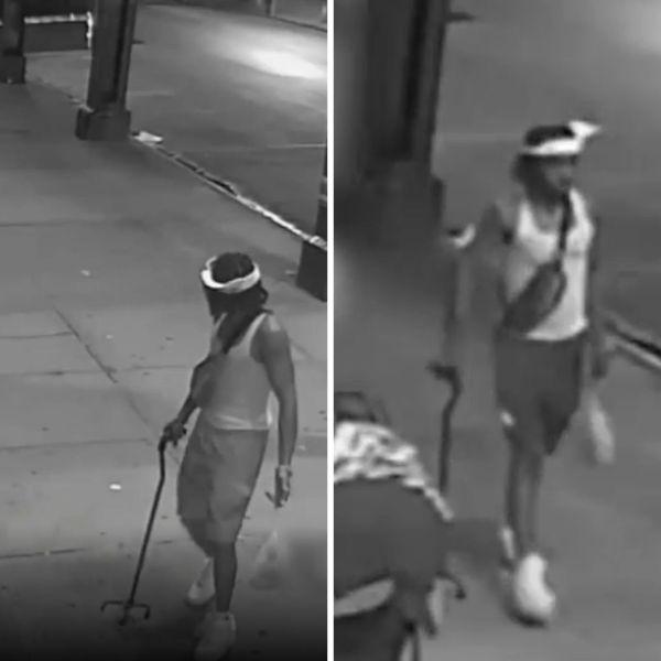 Bronx cane attack