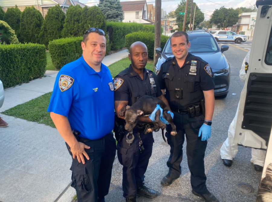 Officers with rescued dog