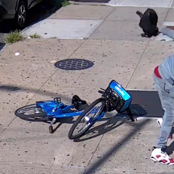 brooklyn sidewalk beating robbery