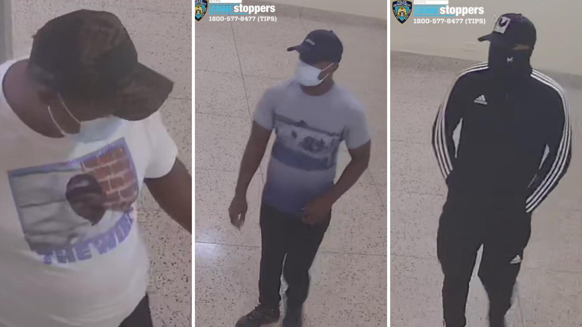 Bronx apartment robbery suspects