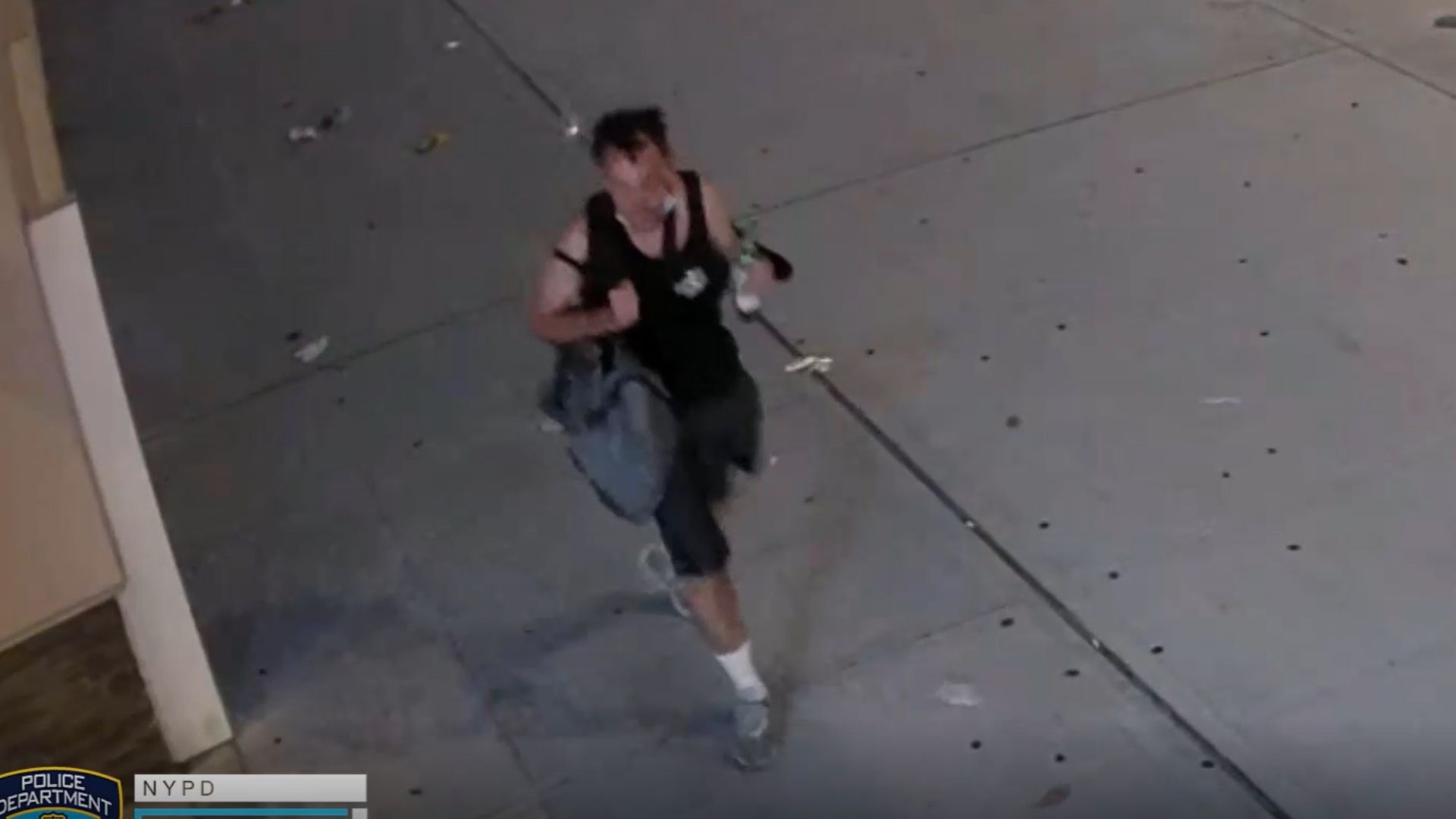 NYPD vehicles robbed