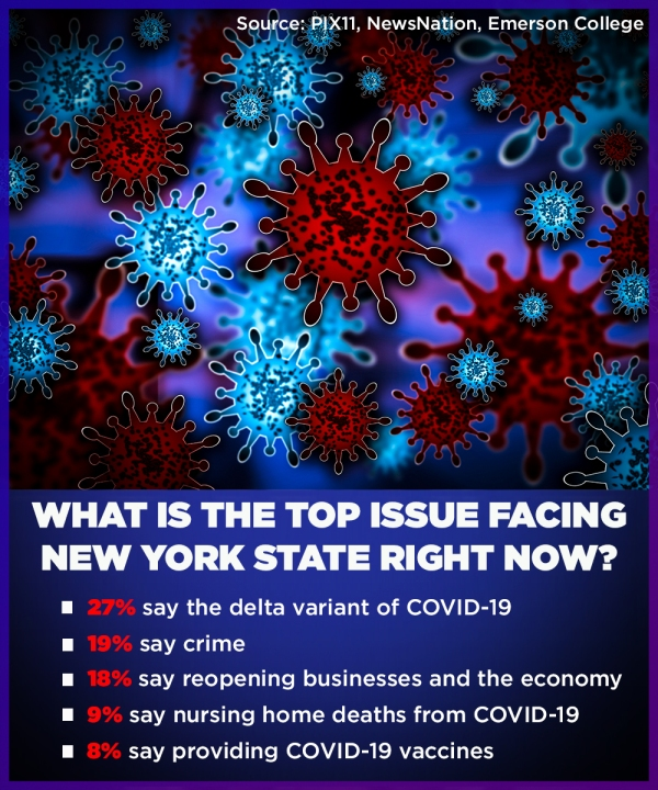 Poll on issues facing NY