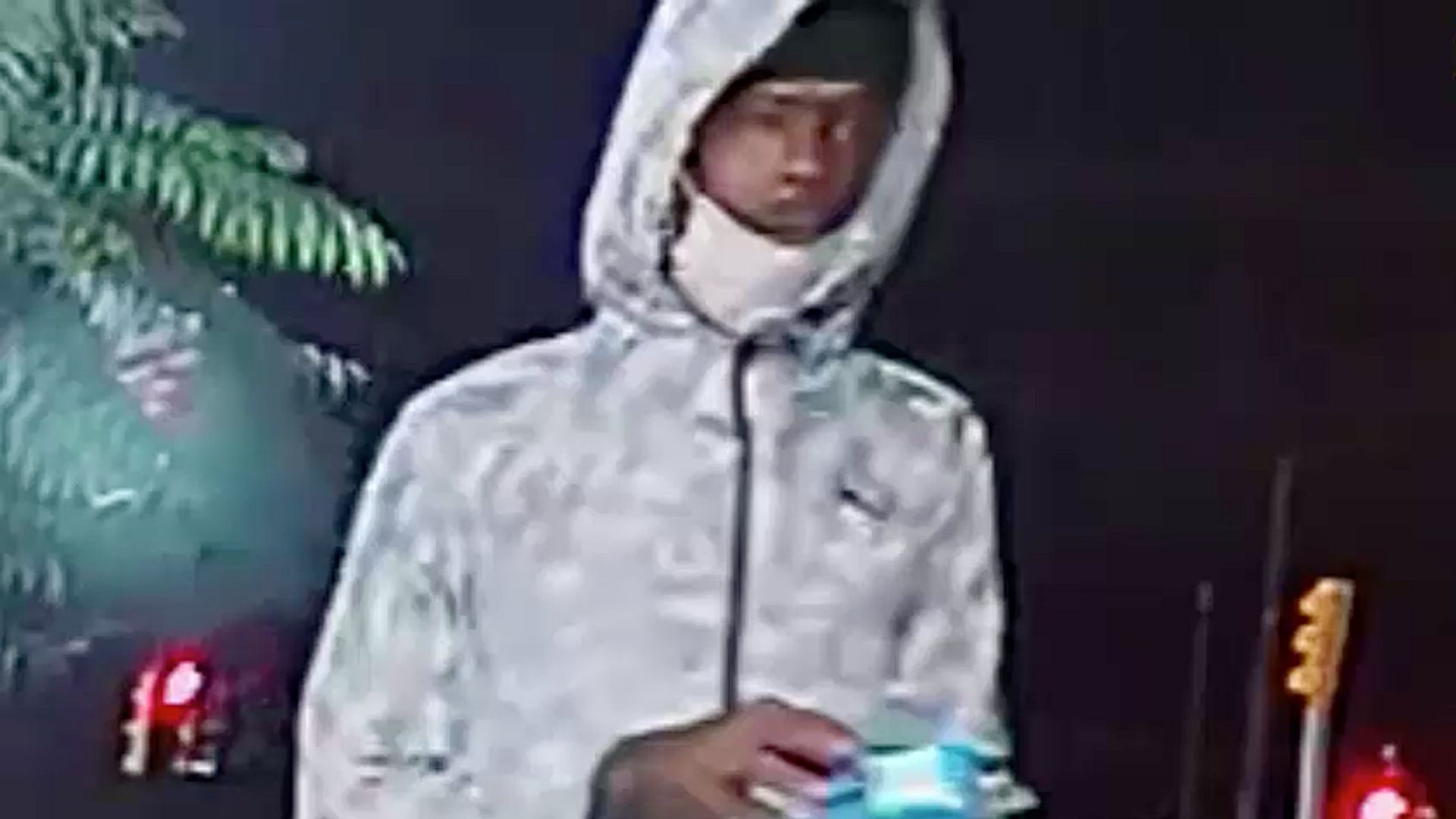 Man wanted in connection with an attack and attempted rape in the Bronx