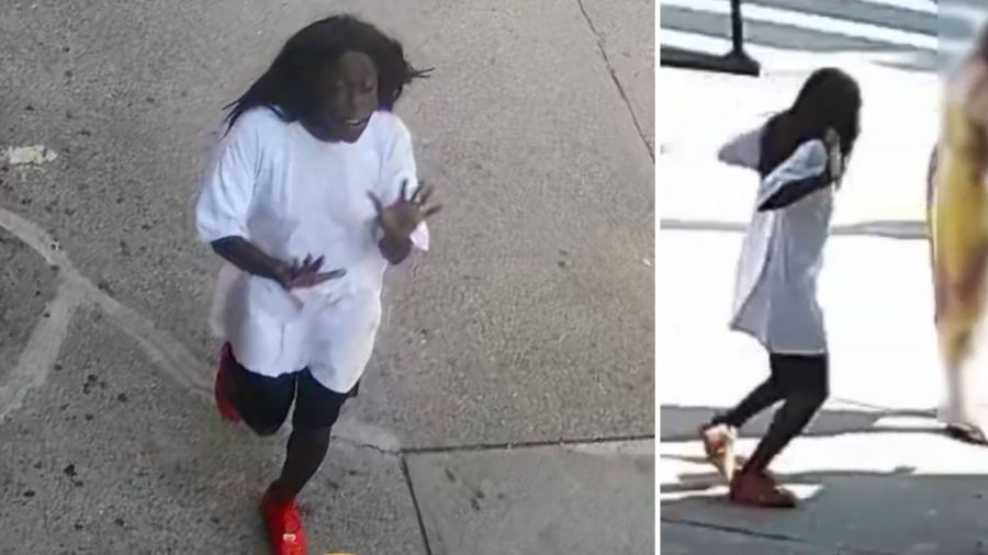Woman shoves 2-year-old girl to ground in the Bronx