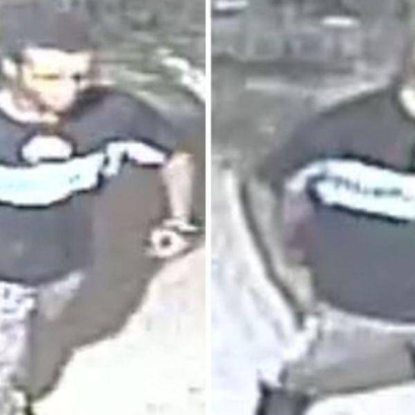 Violent Bronx sex assault