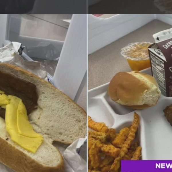 gross paterson high school lunches