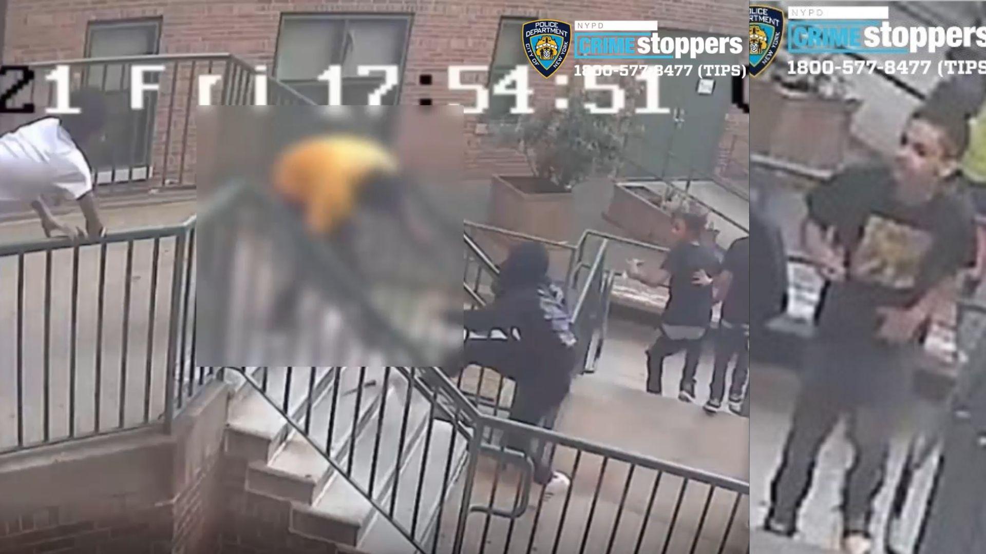 Bronx apt stabbing